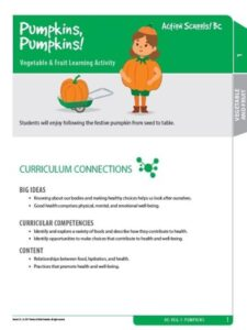 Pumpkins, Pumpkins! Activity Gr 1 image